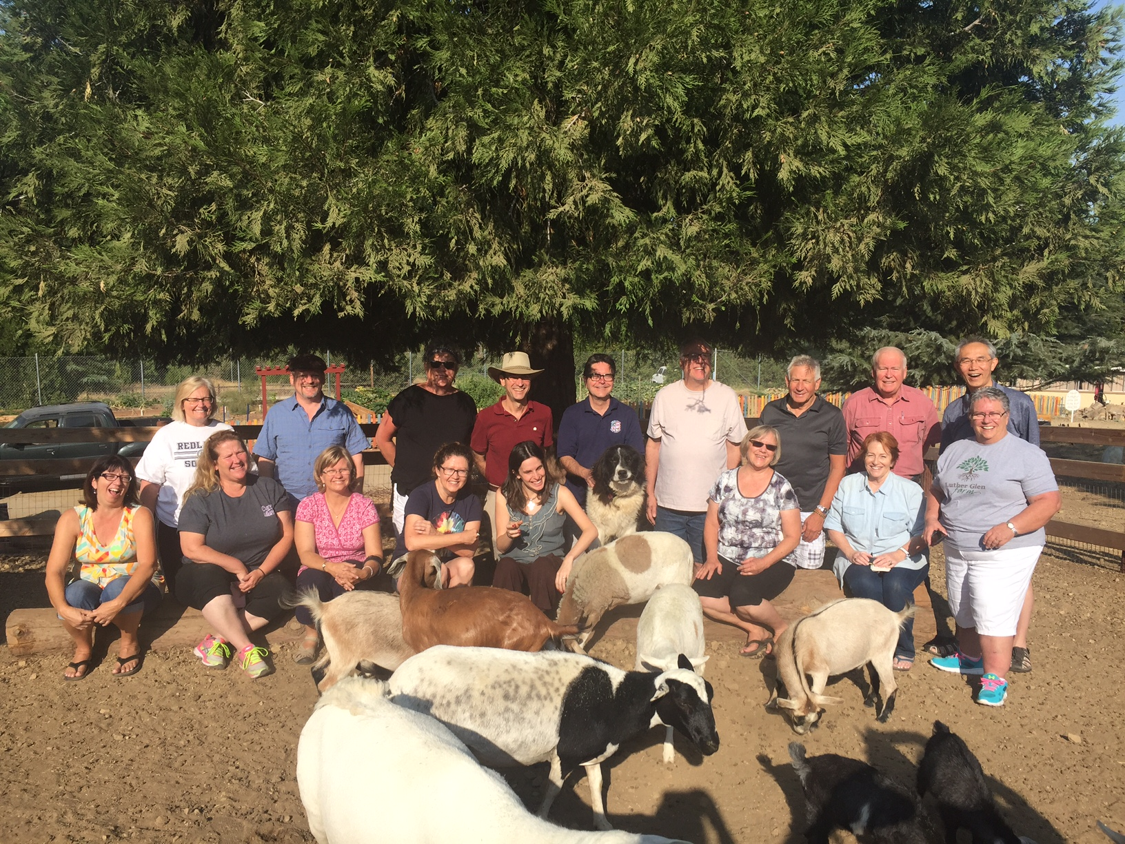 A group of people standing next to a cow