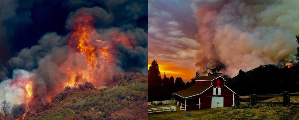 Wildfire Response